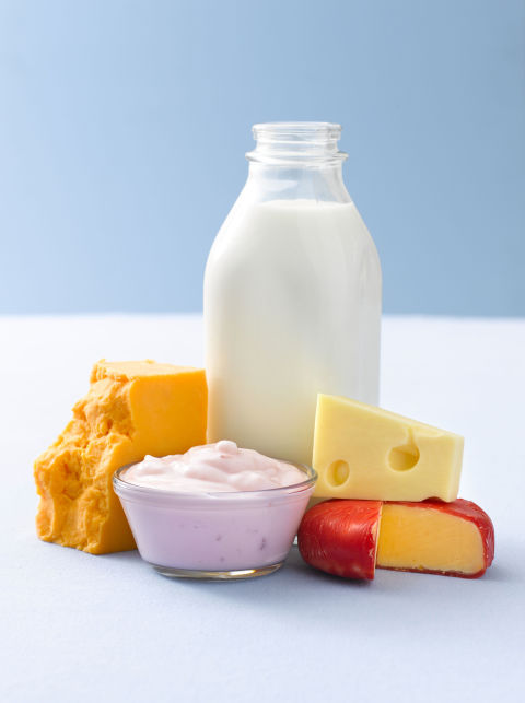 marketing mix on milk and milk products