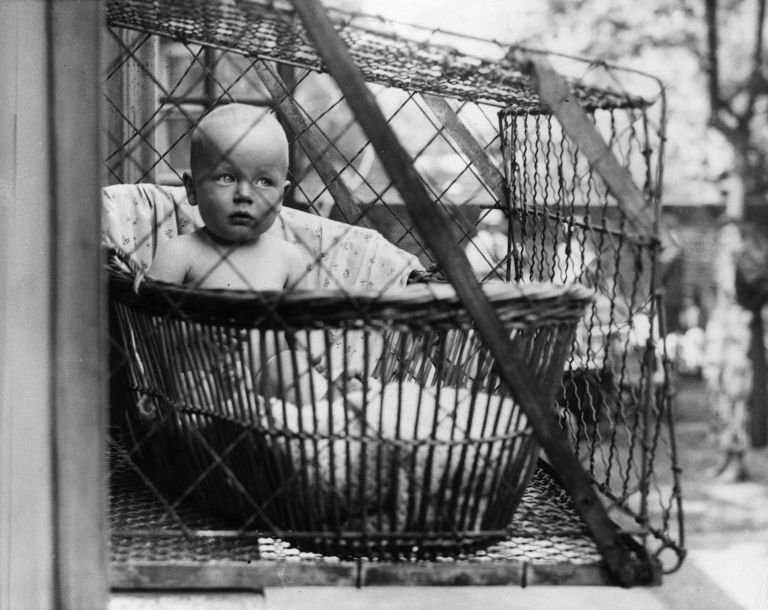 Outdoor Baby Cages Historic Home Trends And Ideas