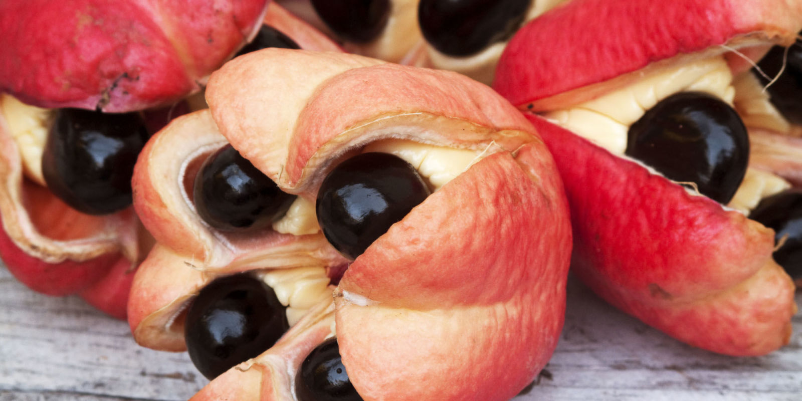 Home Renovation Stores Weird Fruits Bizarre Exotic Fruits