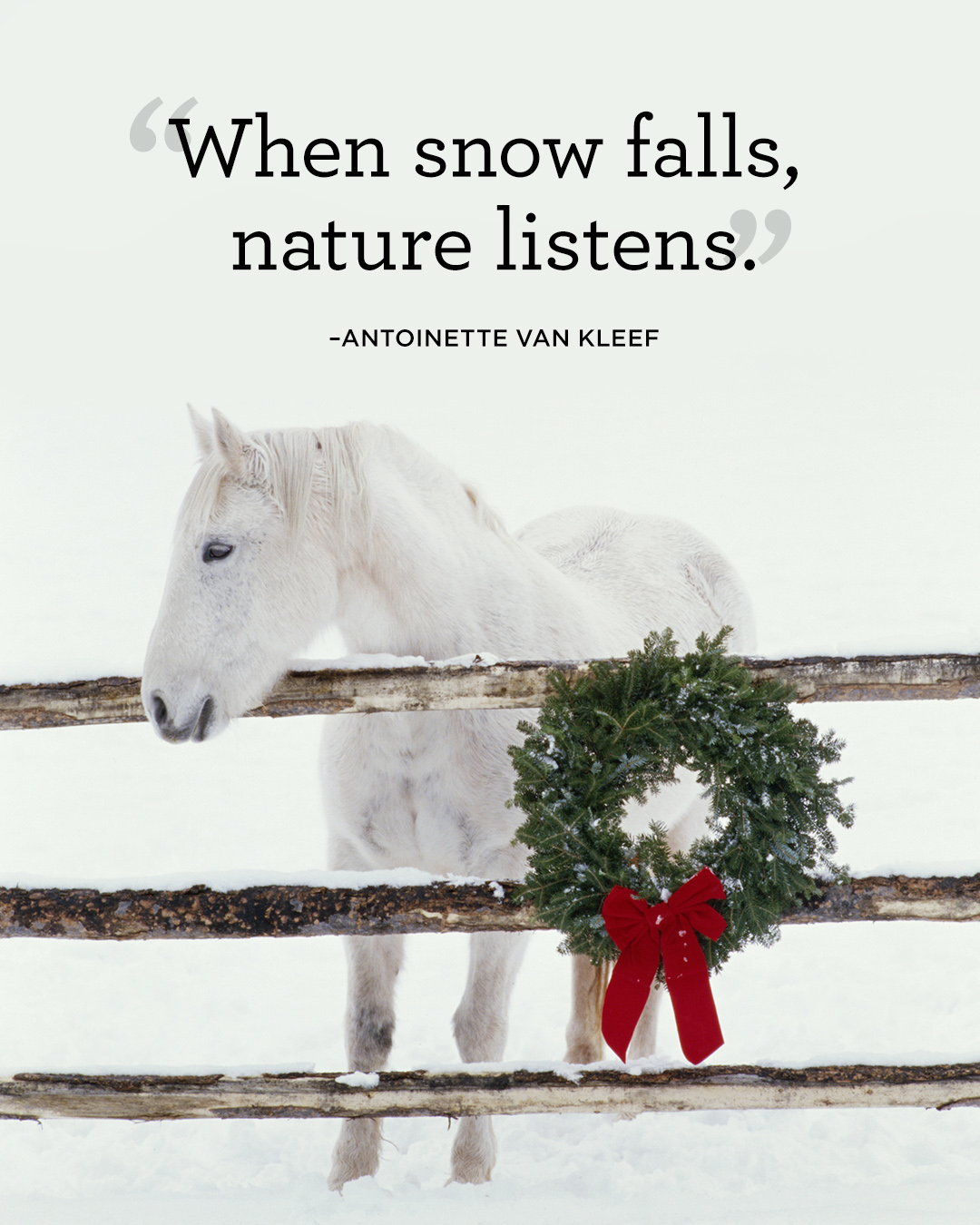Snow Quotes And Sayings: Winter Quotes And Sayings