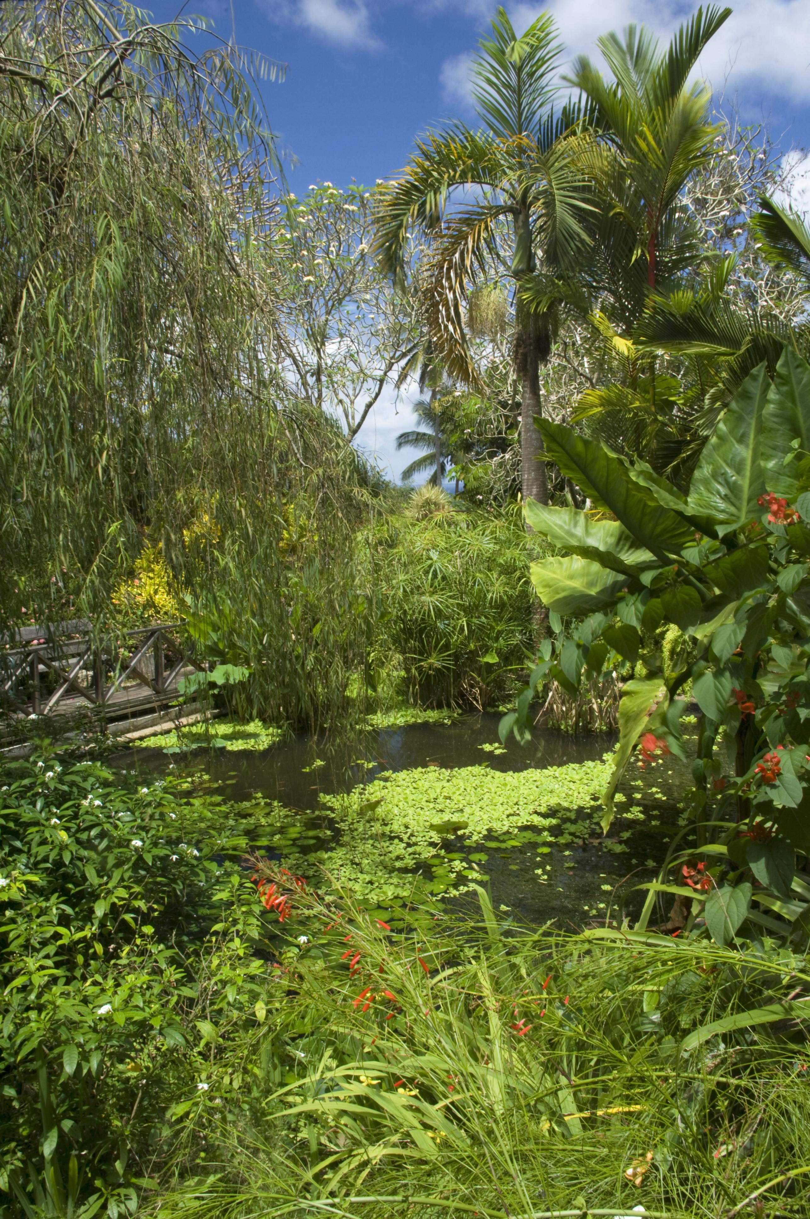 Secret Garden: Around The World In 50 Amazing Gardens
