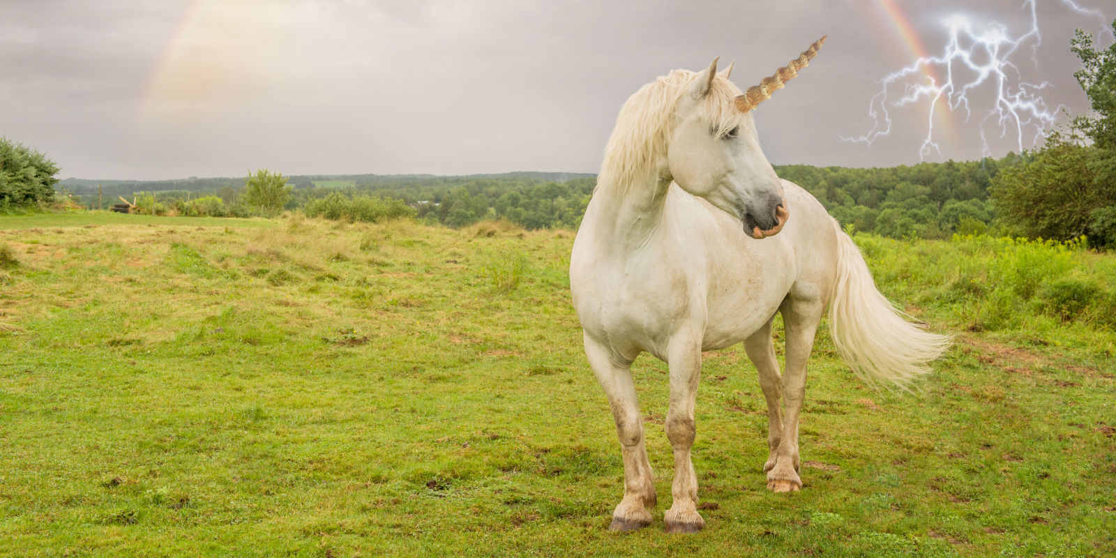 Science Proves That Unicorns Are Real