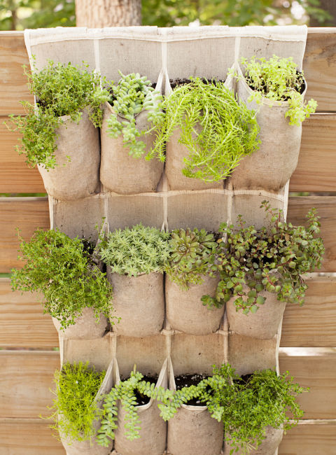 13 container gardening ideas potted plant ideas we love - Astuce deco jardin recup ...