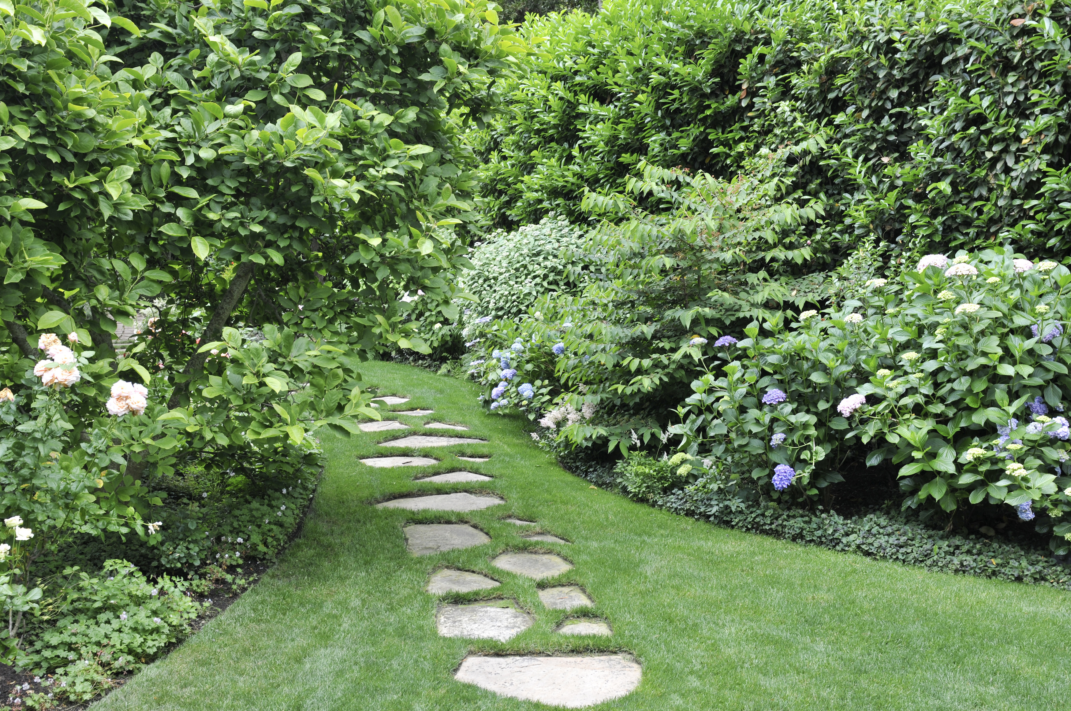 14 Backyard And Front Yard Landscaping Ideas