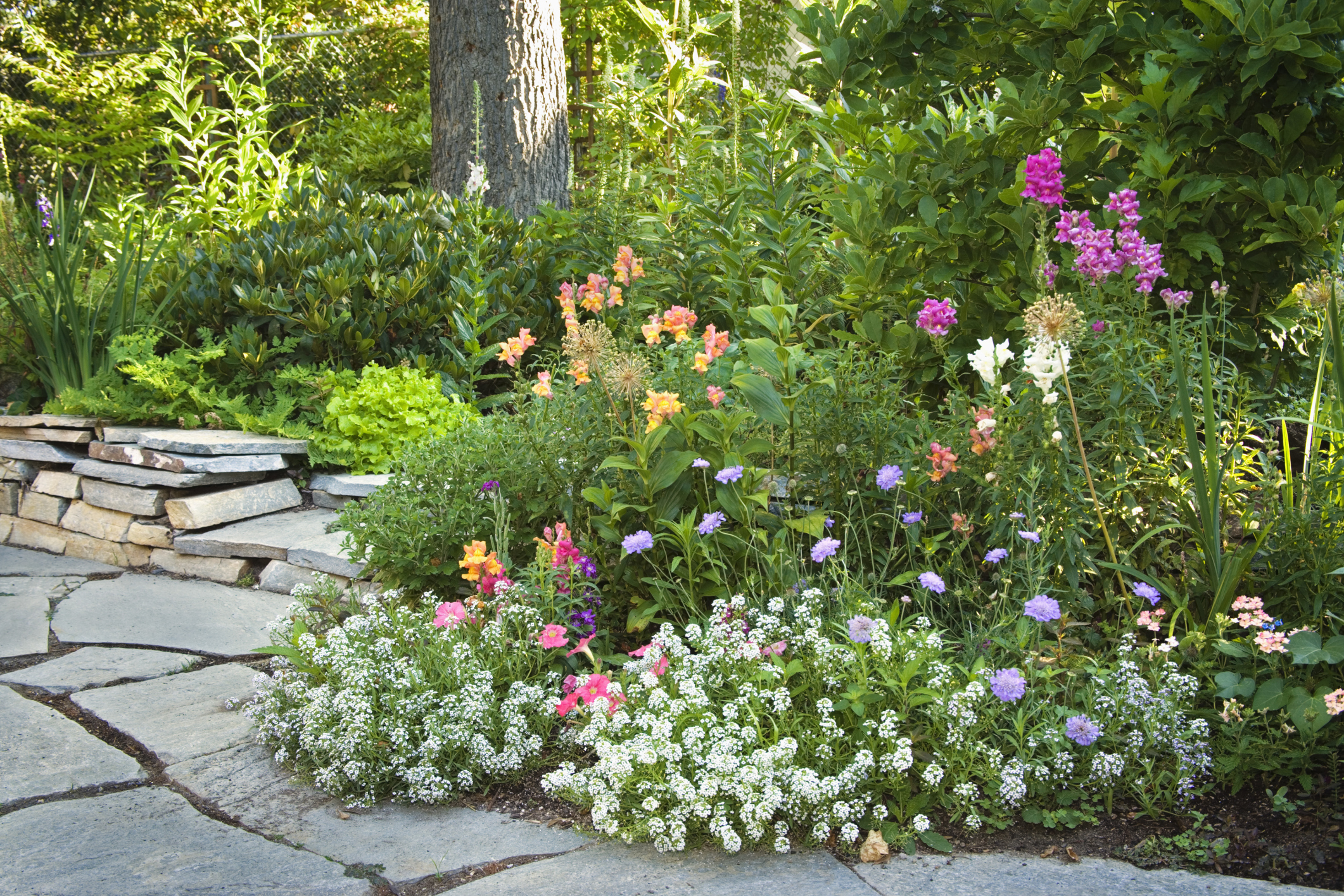 20 best yard landscaping ideas for front and backyard