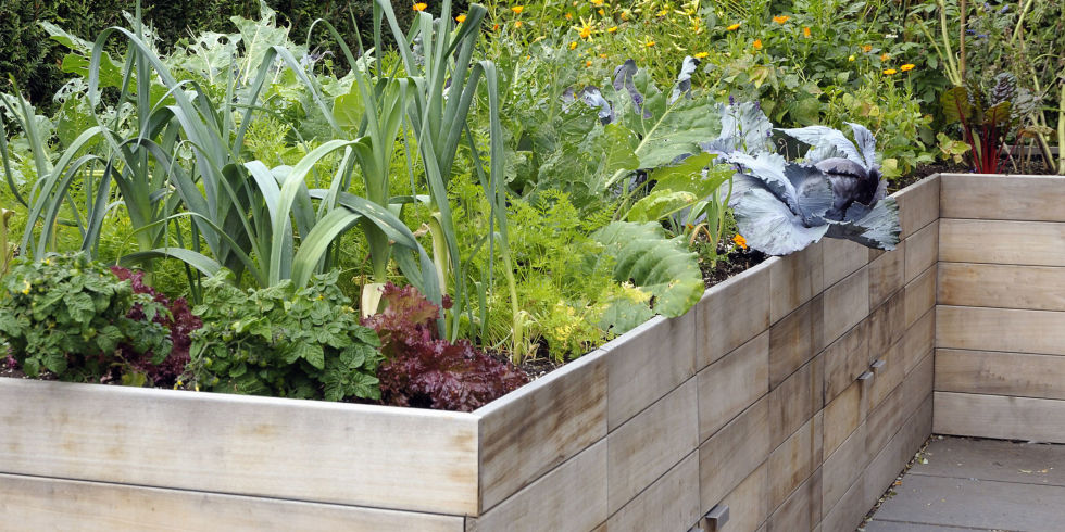 How to Build a Raised Garden Bed DIY Container Garden
