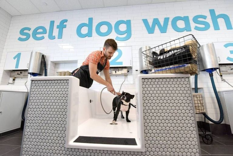 Petsmart introduces pet spa prototype store what the petsmart self service dog wash station along with professional grooming services petsmart prototype store solutioingenieria Image collections