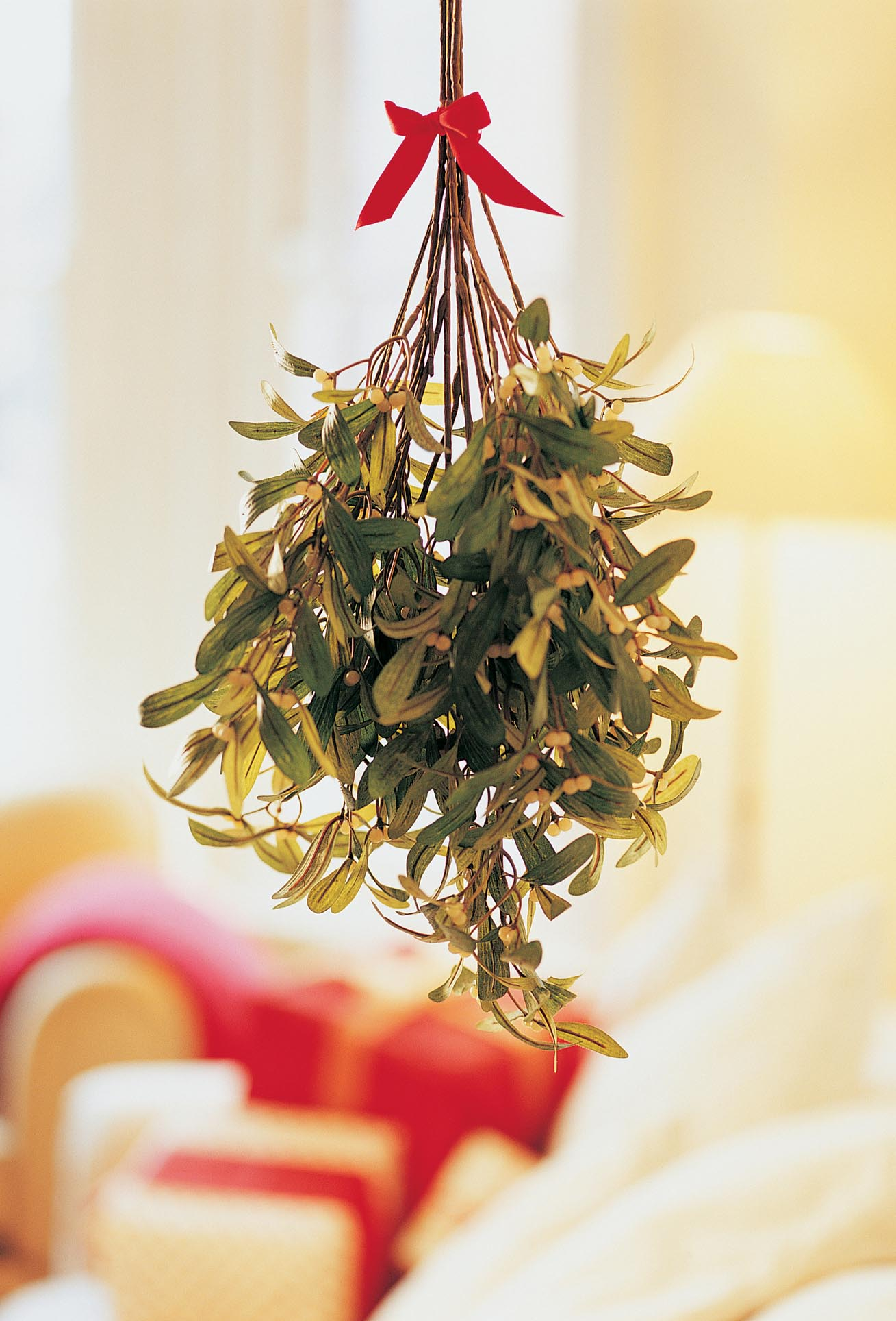 Where in the world was mistletoe first hung as a christmas decoration -