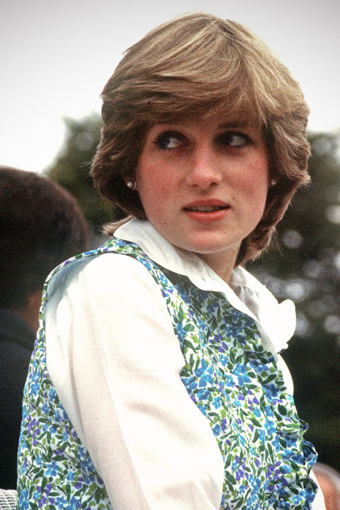 princess diana 222