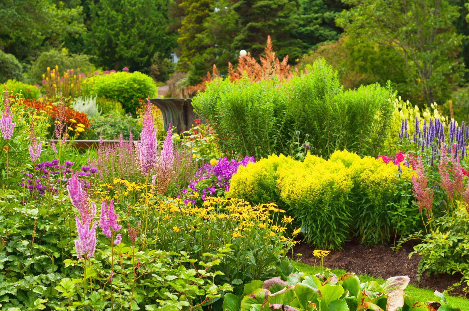 Weeds in flower beds organic killer - Weeds In Flower Beds Organic Killer 57