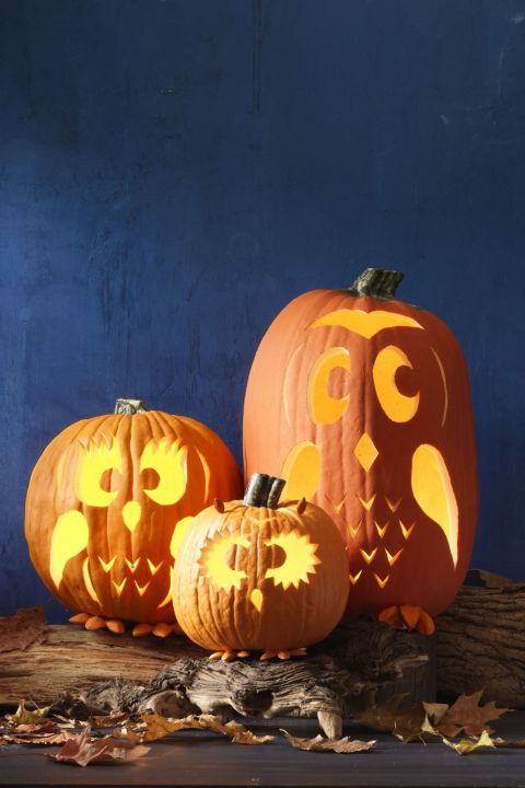 Owl Family Pumpkin Carving Idea