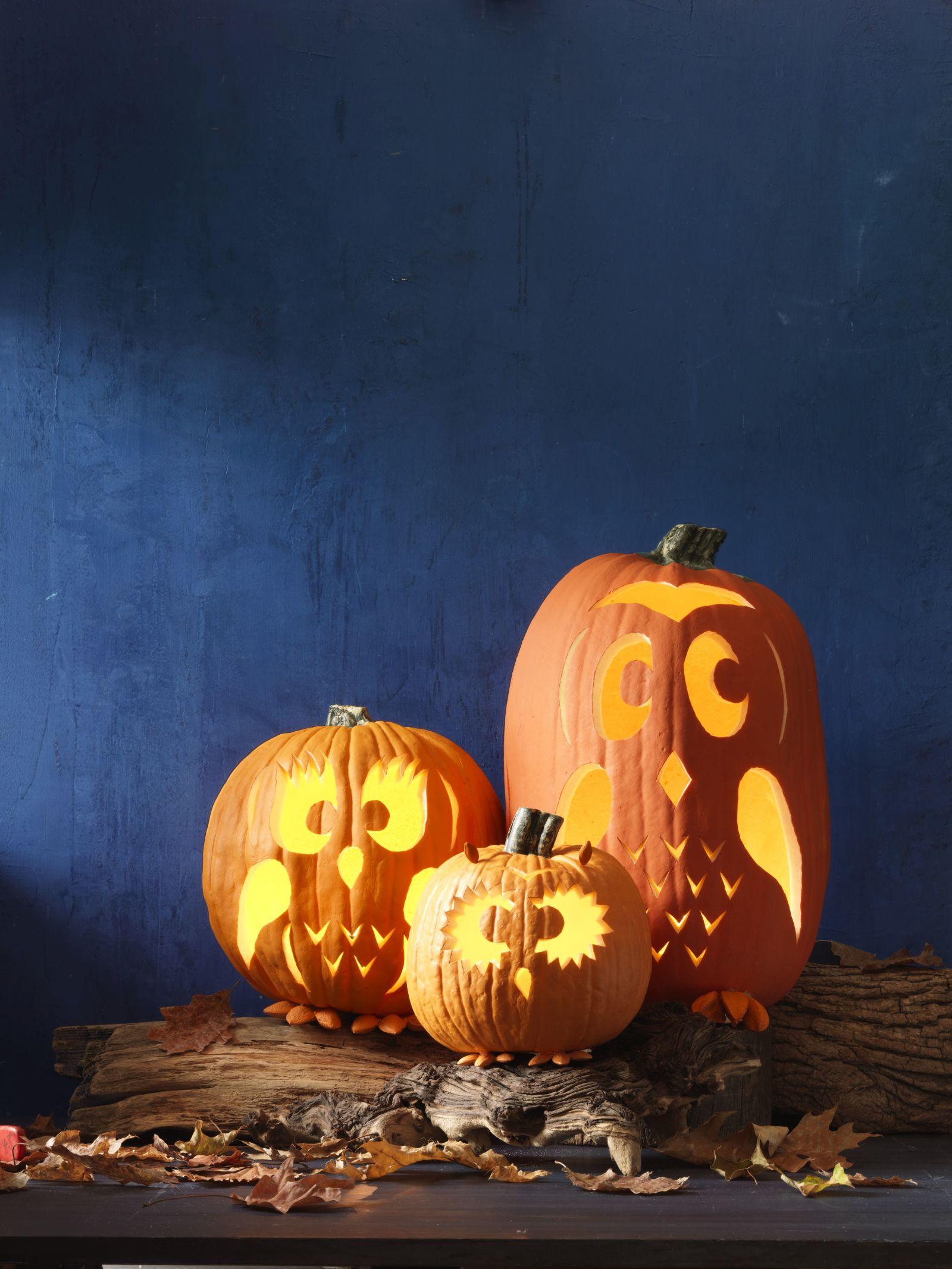 30 Easy Pumpkin Carving Ideas for Halloween 2017 - Cool Pumpkin ...