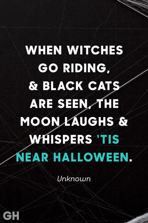Viking Love Quotes Unique 20 Spooky Halloween Quotes  Best Halloween Sayings