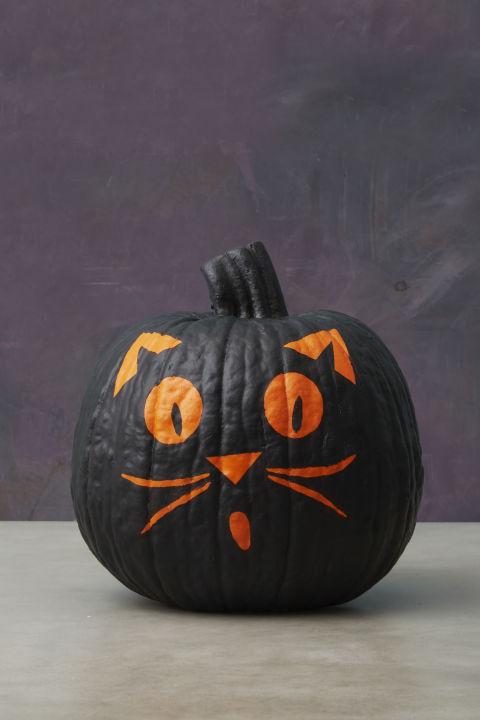 Superb Halloween Painted Pumpkins Part - 4: Black Cat Painted Pumpkin