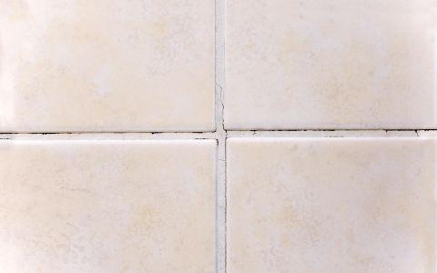 bathroom mildew