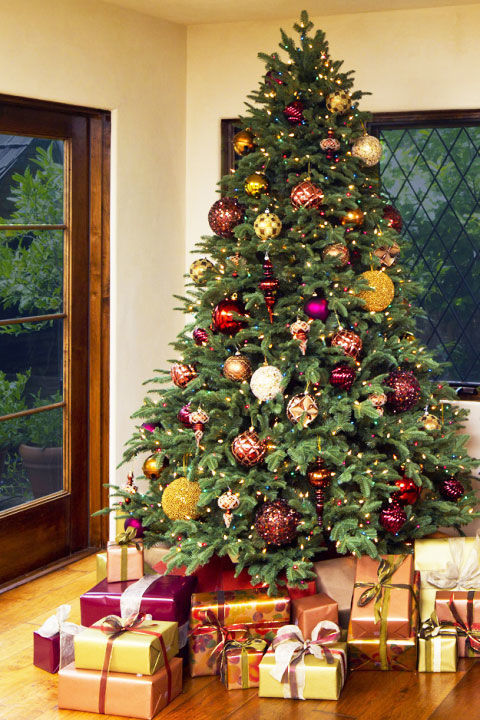 Nice Christmas Tree Home Design