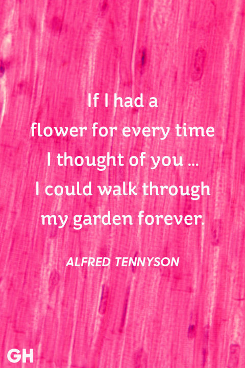 Alfred Tennyson Valentines Day Quote