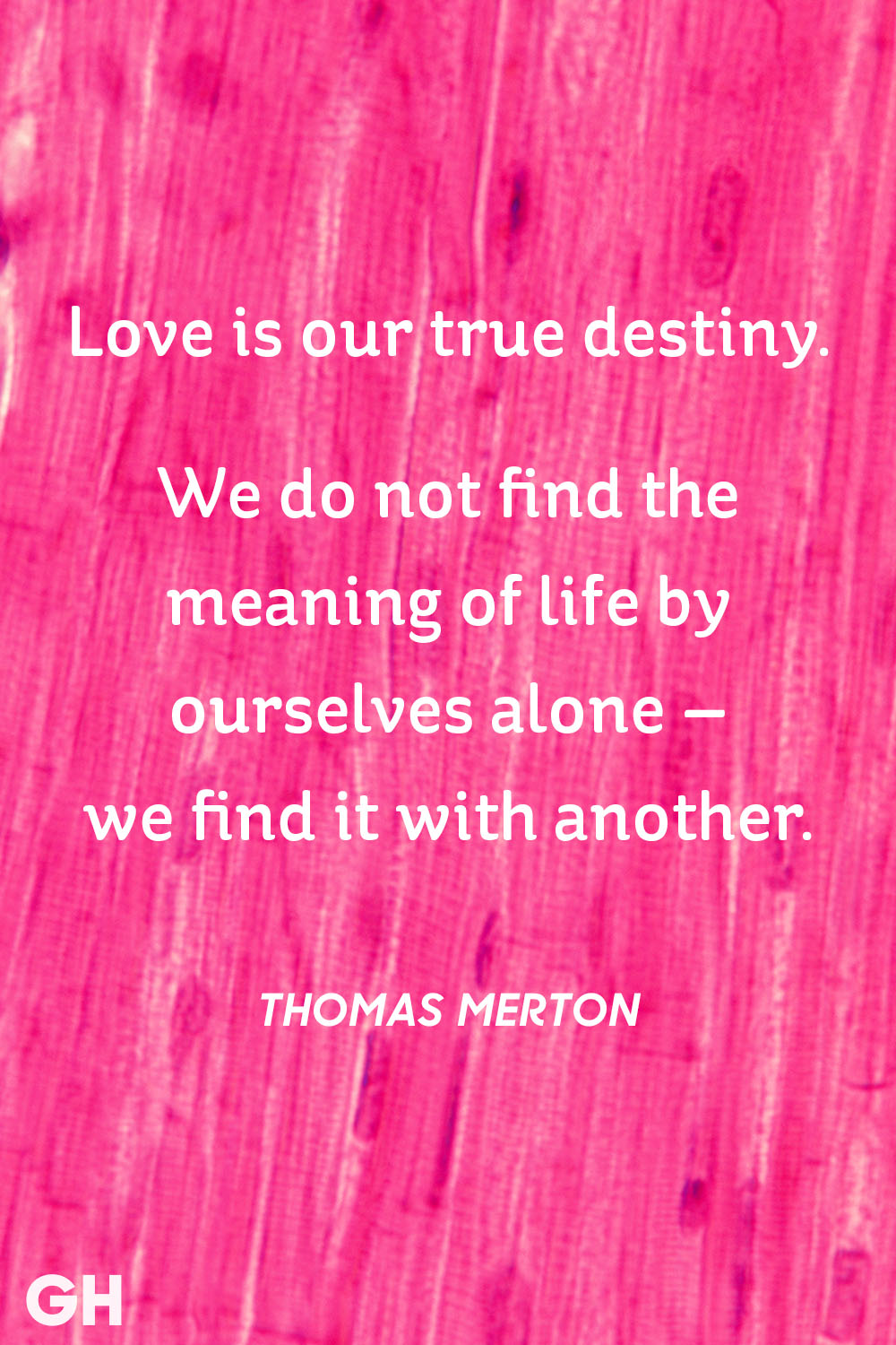 The Meaning Of Love Quotes 30 Cute Valentine's Day Quotes  Best Romantic Quotes About