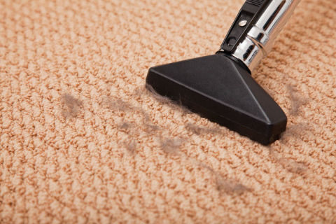 How To Clean Carpet Best Way To Get Stains Out Of Carpet