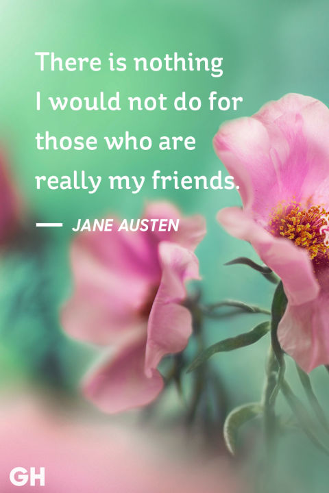 Cute Friendship Quotes With Pictures Hd Pictures Inspiration ...