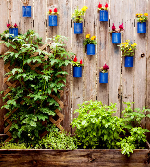 plant a vertical garden - Tiny Patio Garden Ideas