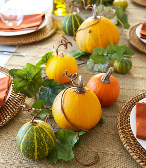 pumpkin patch - Thanksgiving Table Decorations