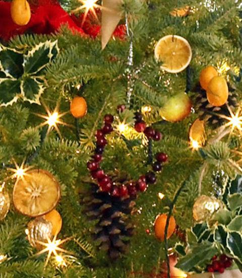 Natural Christmas Tree Decorations Hgtv Mini Cranberry Holiday Wreath