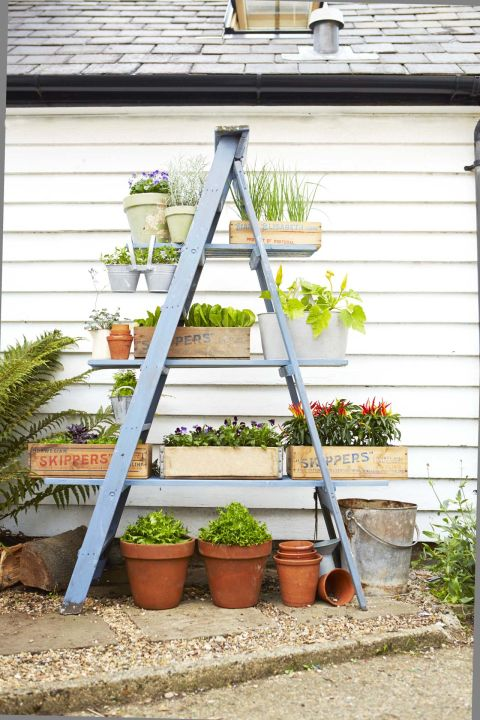 If you love piles of plants, but don't have tons of outdoor space, look up. Stack your favorite blooms and greens on a pretty painted step ladder. Get the tutorial here »
