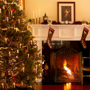 How to make your christmas tree last longer heloise hints - Make christmas tree last longer ...