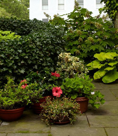 Small Gardens Pictures 40 small garden ideas - small garden designs