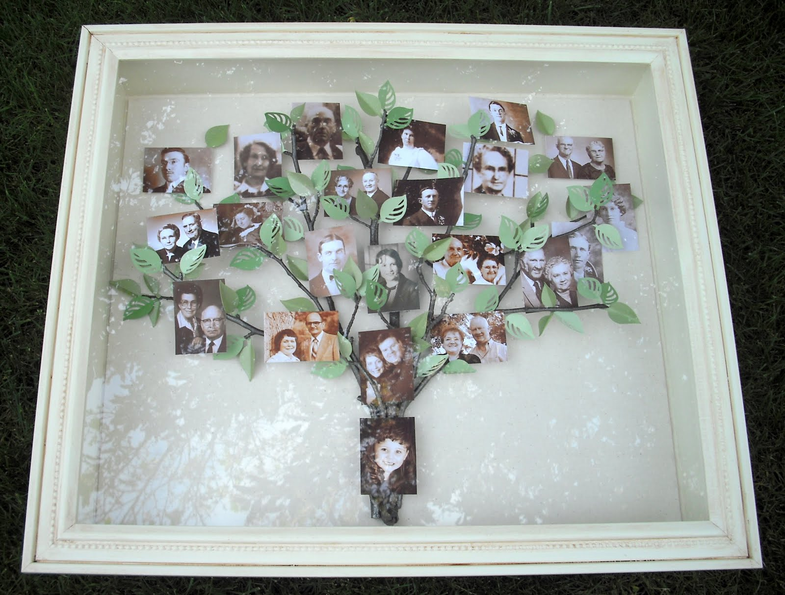 Family tree crafts family diy projects jeuxipadfo Choice Image