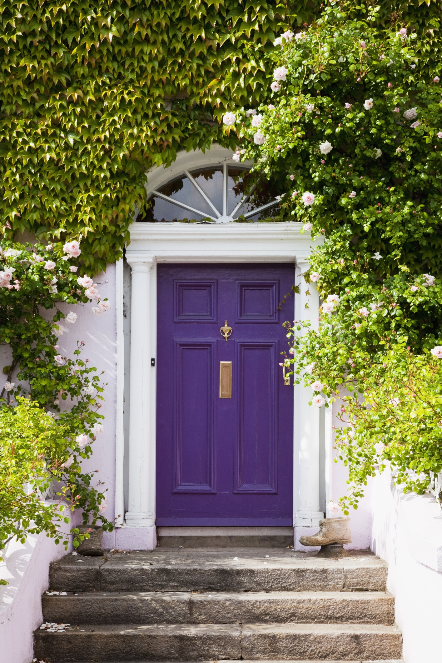 2122 #4E5D0E Colorful Front Doors Curb Appeal Ideas wallpaper Purple Front Doors 47051415