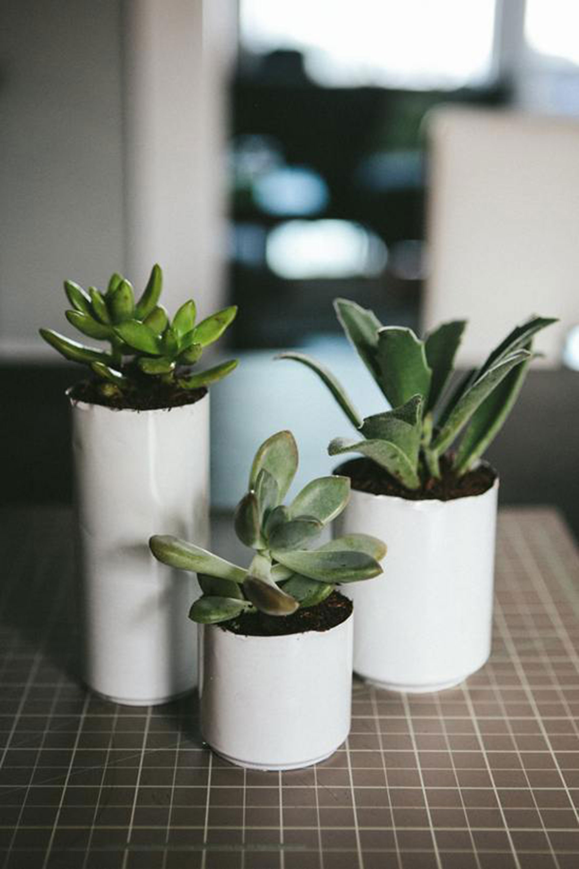 Set aside those dull pots and opt to use creative planters that you will love.