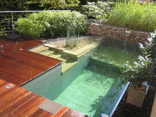 Natural pools natural swimming pools and ponds for Sustainable swimming pools