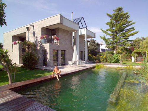smart green design - Nice Houses With Swimming Pools