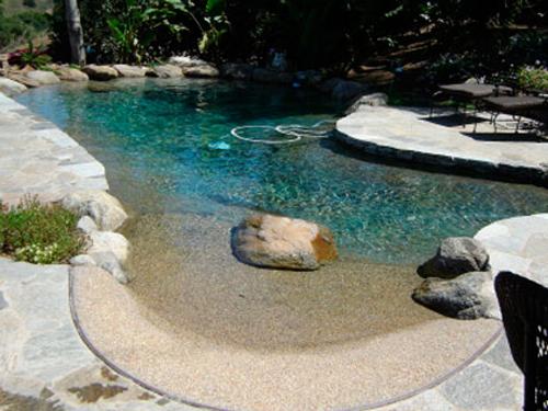 natural pools natural swimming pools and ponds natural swimming pool design