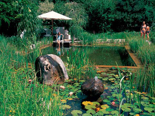 natural pools natural swimming pools and ponds. Interior Design Ideas. Home Design Ideas
