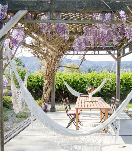 Backyard Vineyard Ideas : Backyard Oasis  Beautiful Backyard Ideas