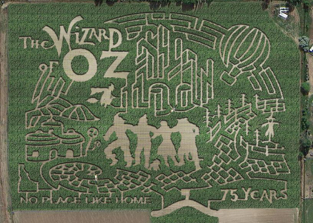 Wizard Of Oz Corn Maze Idaho S The Farmstead Draws Crowds