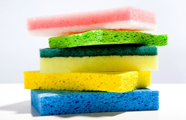News for sponges surprising things to do with kitchen sponges - Seven different uses of the kitchen sponge ...
