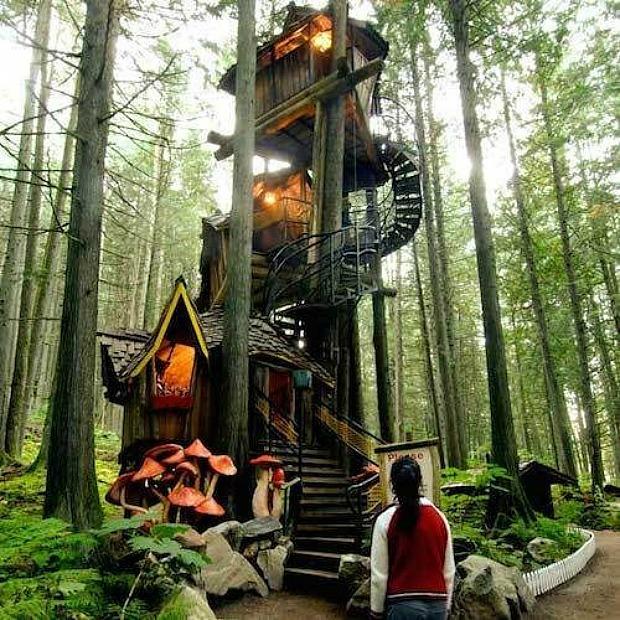 . Enchanted Forest for Sale   Fairytale Theme Park Tour