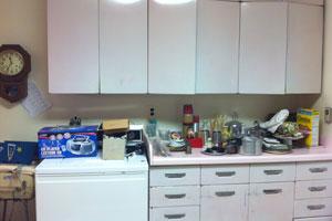 Kitchen Cabinet Choices: A Food Editoru0027s Kitchen Remodel