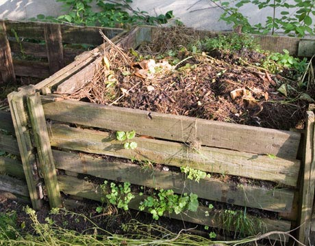 How To Make Good Compost. Compost Pile In Garden