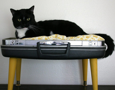 suitcase pet bed - Homemade Home Decor