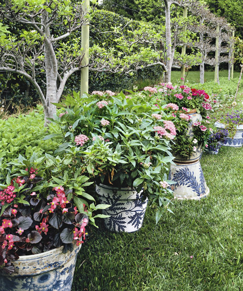 13 container gardening ideas potted plant ideas we love - Flower Garden Ideas In Pots