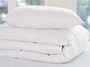 pottery barn classic goose down comforter