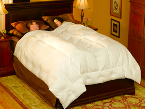 pacific coast embrace down comforter