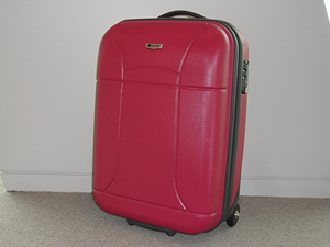 Delsey Helium Zip Carry On Luggage Review