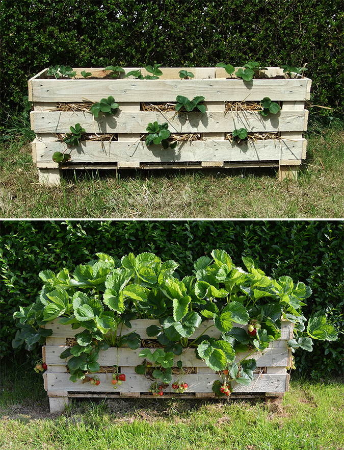 garden pallet diy pallet project ideas - Garden Ideas With Pallets