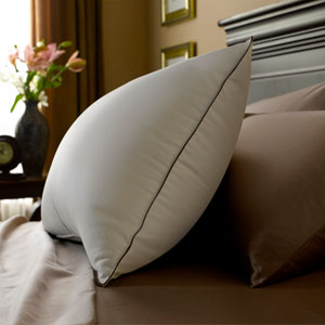 stearns and foster down caress pillow